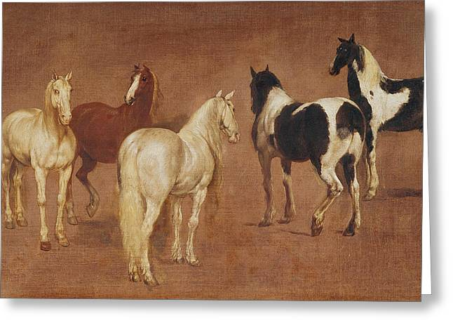 Study Of Five Horses Oil On Canvas Greeting Card by Adam Frans van der Meulen