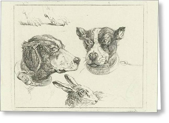 Study Sheet With Two Dog Heads, Paws Dog And Head Of Hare Greeting Card by Jan Dasveldt