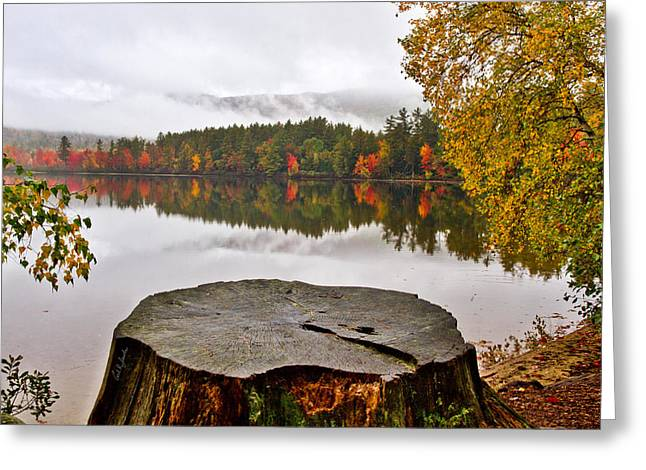 Stumped By The View Greeting Card by Carl Jacobs