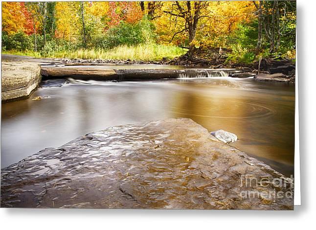Sturgeon River In Fall Greeting Card