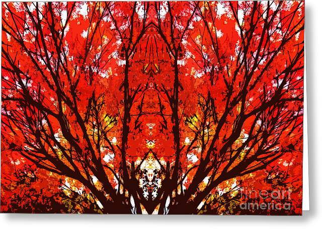 Stylized Maple Tree With Red And Orange Leaves Greeting Card