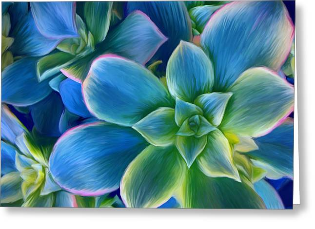 Succulent Blue On Green Greeting Card by Sharon Beth