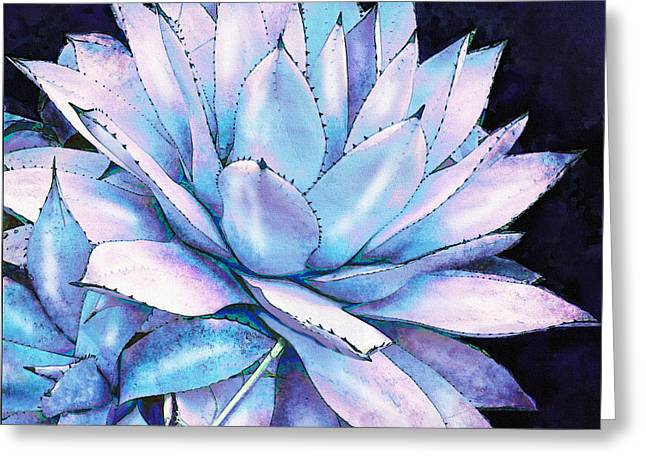 Succulent In Blue And Purple Greeting Card by Jane Schnetlage