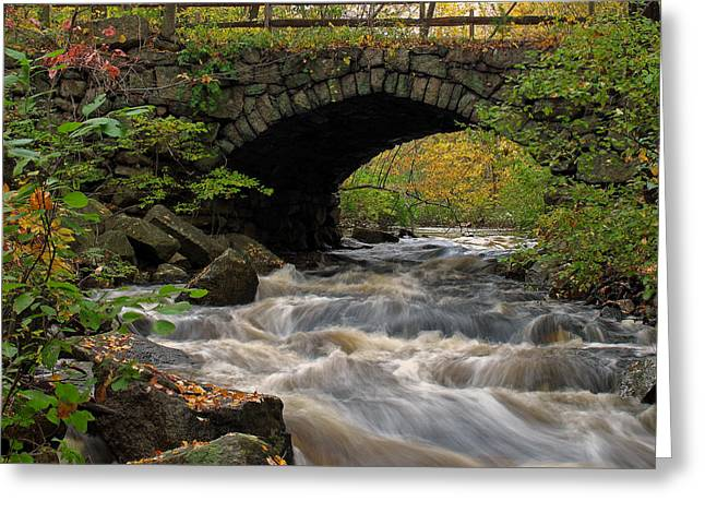 Sudbury River Greeting Card by Juergen Roth