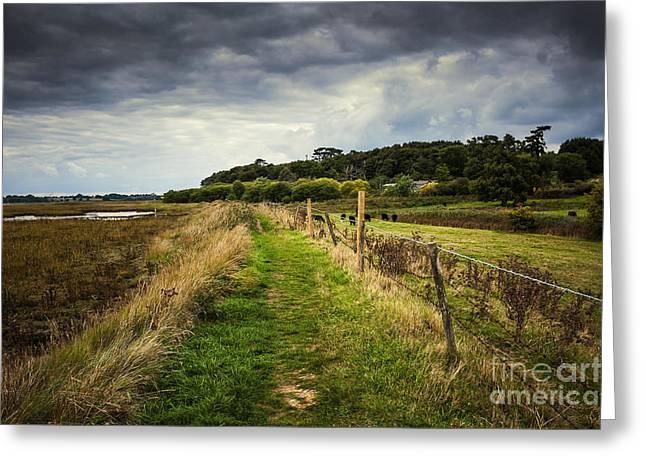 Suffolk Landscape Greeting Card by Svetlana Sewell