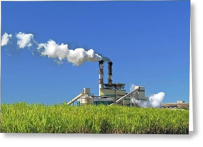 Sugar Cane Factory Greeting Card by Bildagentur-online/mcphoto-schulz