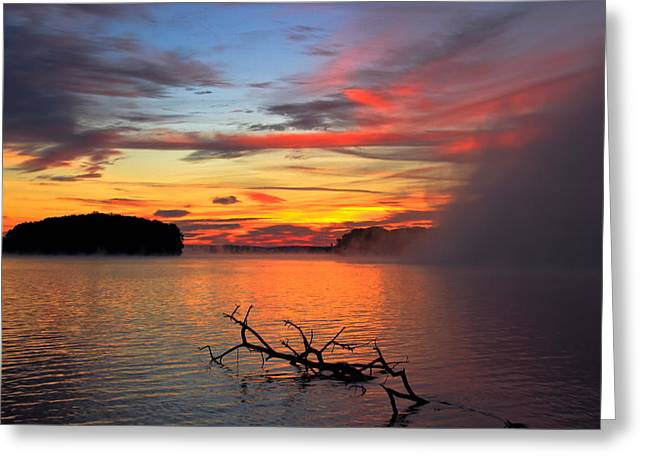 Sugar Creek Sunrise As The Fog Rolls In Greeting Card