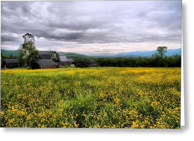 Sugar Hill Farm Greeting Card by Andrea Galiffi