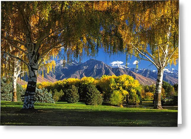 Sugarhouse Park Salt Lake City Ut Greeting Card