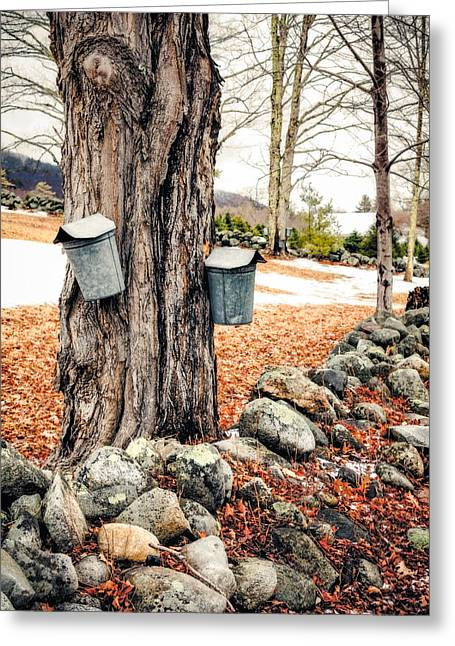 Sugaring Greeting Card
