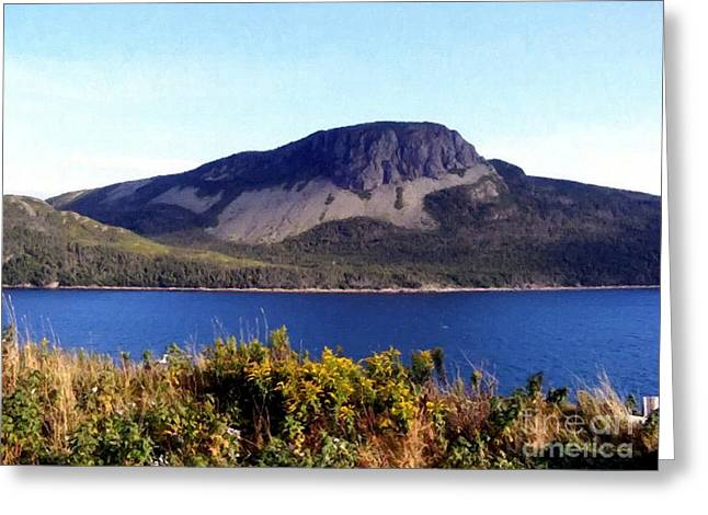 Sugarloaf Hill In Summer Greeting Card by Barbara Griffin