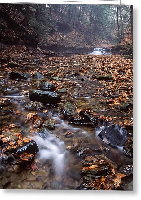 Sulphur Springs Falls Greeting Card