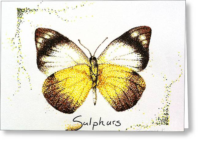 Sulphurs - Butterfly Greeting Card by Katharina Filus