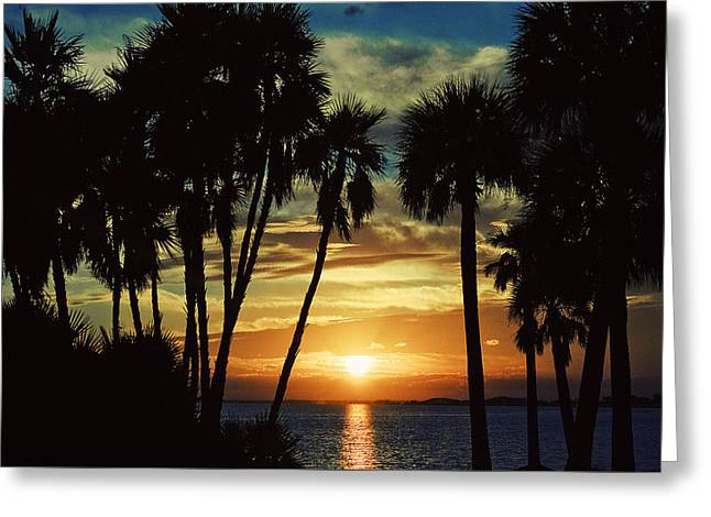 Greeting Card featuring the photograph Sultry Sunset by Janie Johnson
