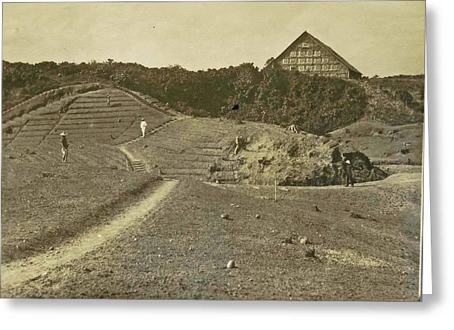 Sumatra Indonesia Bindjey Estate Deli Mij Tobacco Field Greeting Card by Artokoloro
