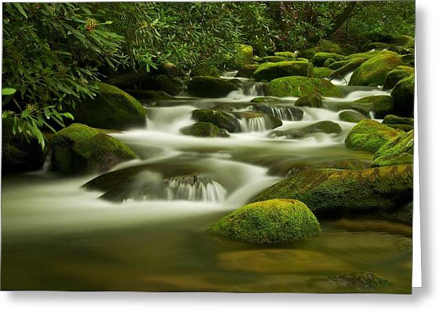 Summer Along The Roaring Fork Greeting Card by Keith Nicodemus