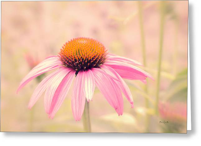Summer Always Comes Anyway Greeting Card by Bob Orsillo