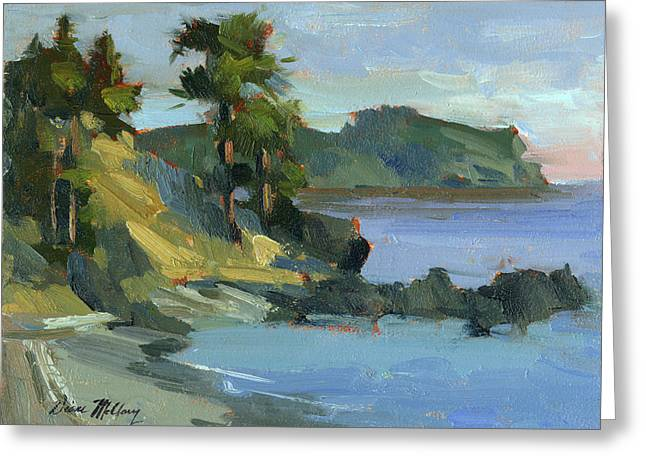 Summer At Lopez Island Greeting Card by Diane McClary
