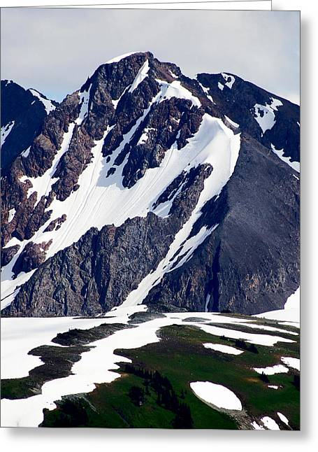 Summer At The Top Of Whistler Greeting Card by Christine Burdine