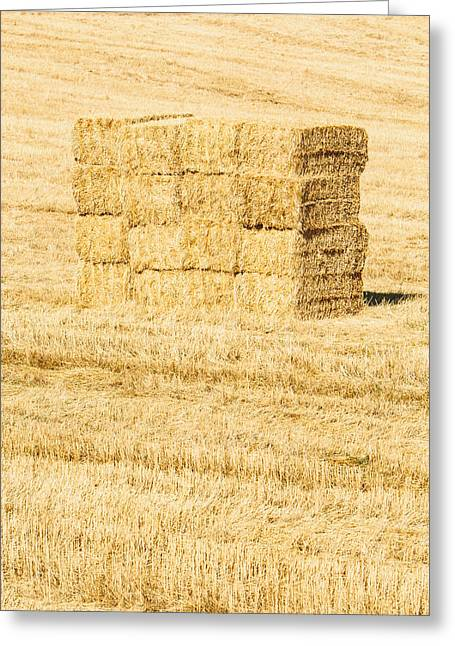 Summer Bales Greeting Card by Clint Brewer