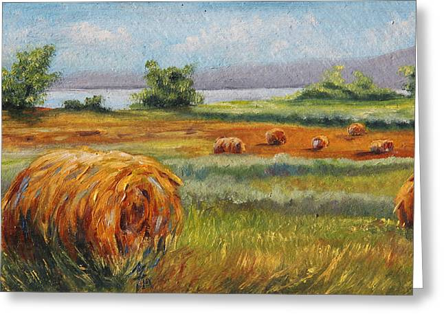 Summer Bales Greeting Card by Meaghan Troup