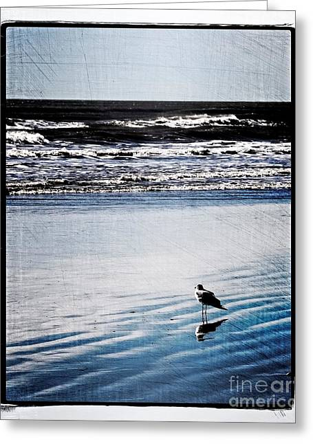 Summer Beach Greeting Card by Perry Webster