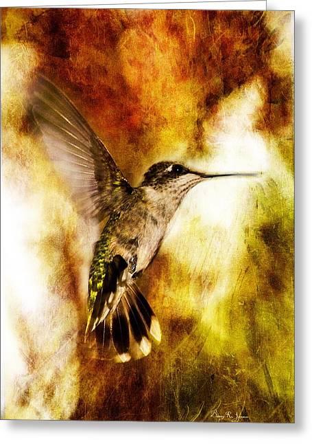 Hummingbird - In Flight - Summer Beauty Greeting Card by Barry Jones