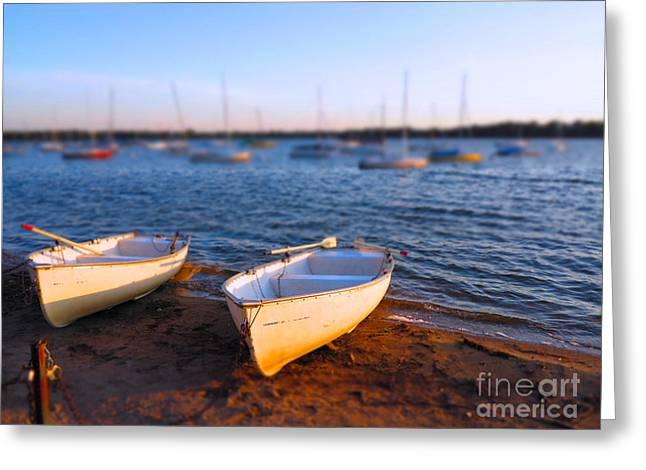Summer Boats Greeting Card