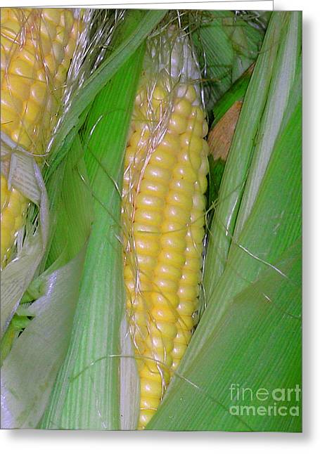 Summer Corn Greeting Card