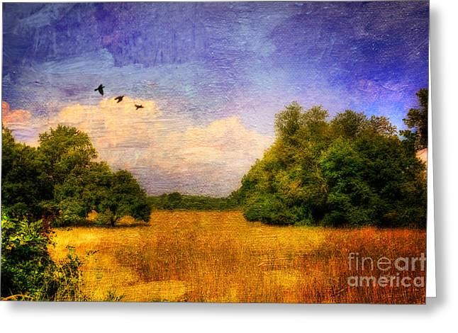 Summer Country Landscape Greeting Card by Lois Bryan