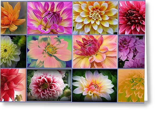 Summer Time Dahlias Greeting Card by Dora Sofia Caputo Photographic Art and Design