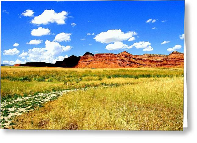 Greeting Card featuring the photograph Summer Day On Ranch Land by Antonia Citrino