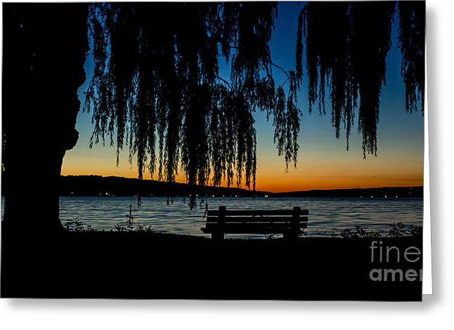 Summer Evening At Stewart Park Greeting Card