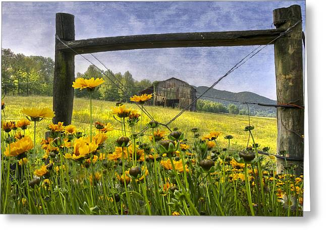 Summer Fields Greeting Card by Debra and Dave Vanderlaan