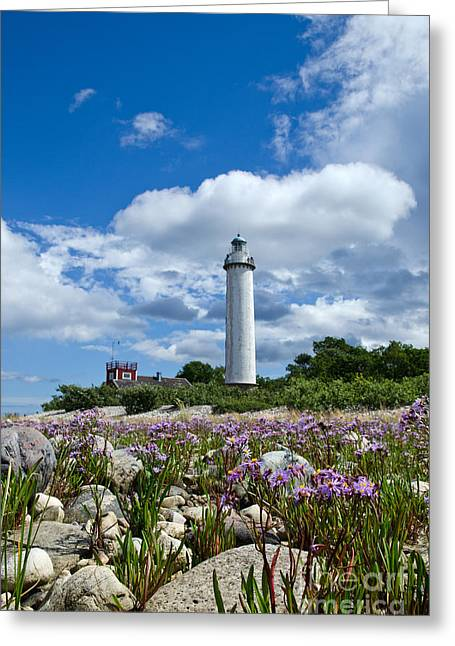 Greeting Card featuring the photograph Summer Flowers At Lighthouse by Kennerth and Birgitta Kullman