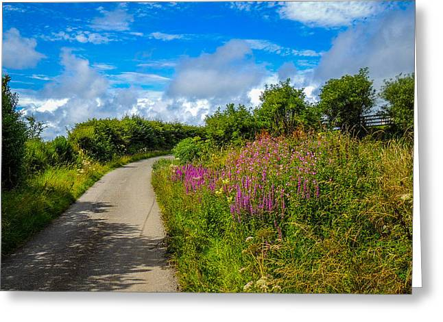 Summer Flowers On Irish Country Road Greeting Card