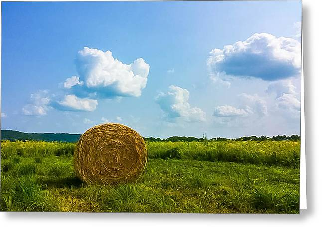 Summer Harvest Greeting Card by Martha Cordero