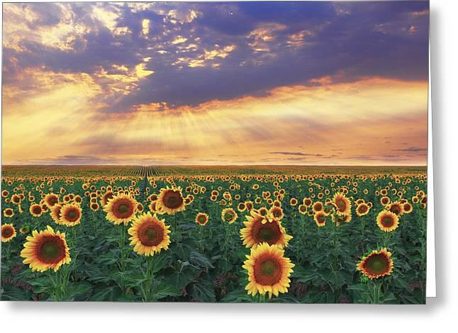 Greeting Card featuring the photograph Summer Haze by Kadek Susanto