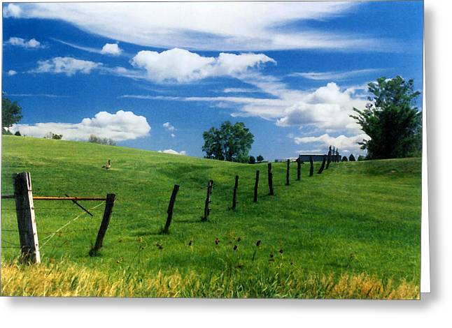 Greeting Card featuring the photograph Summer Landscape by Steve Karol