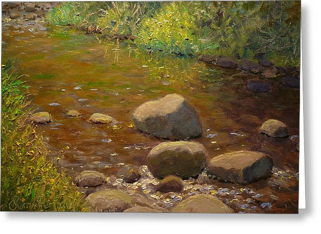 Summer Leith Stream  Greeting Card by Terry Perham