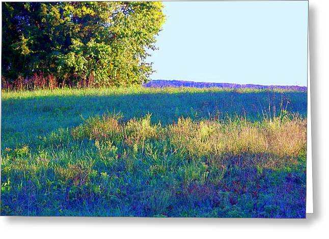 Summer Light Greeting Card by Shirley Moravec