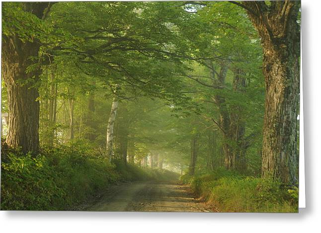 Summer Morning, Cory Hill Road Greeting Card