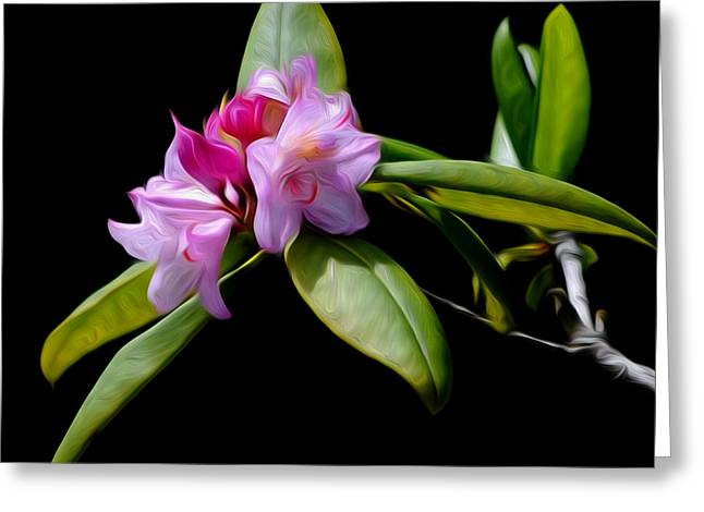 Summer Rhododendron Greeting Card