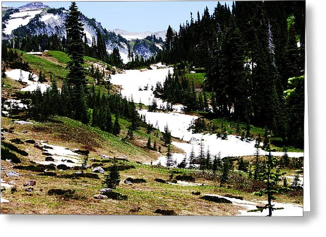 Summer Snow Greeting Card