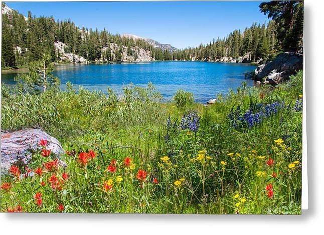 Summer Splendor At T J Lake Greeting Card by Lynn Bauer