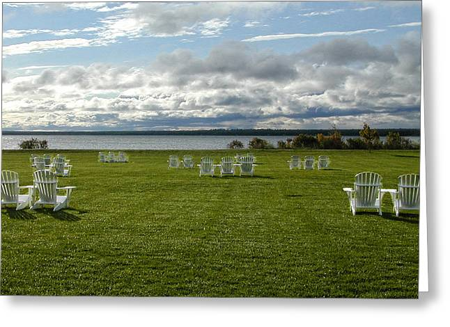 Summer Stretching On The Grass Greeting Card