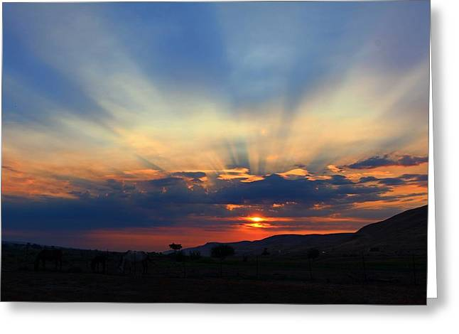 Greeting Card featuring the photograph Summer Sunrise by Lynn Hopwood