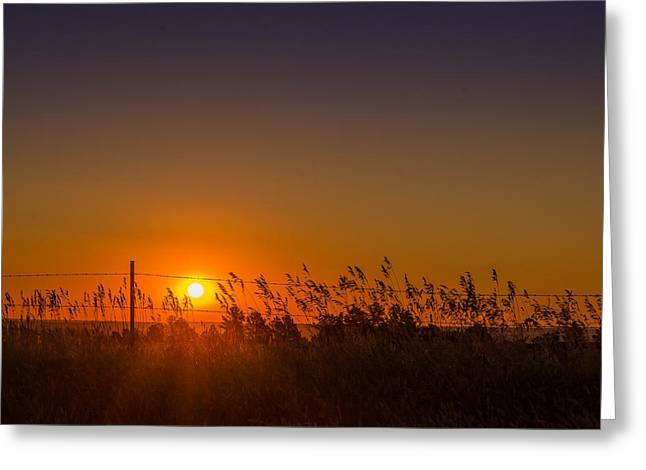 Summer Sunrise On The Plains Greeting Card