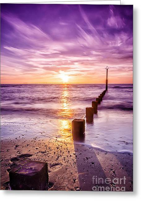 Summer Sunset Greeting Card by Darren Wilkes