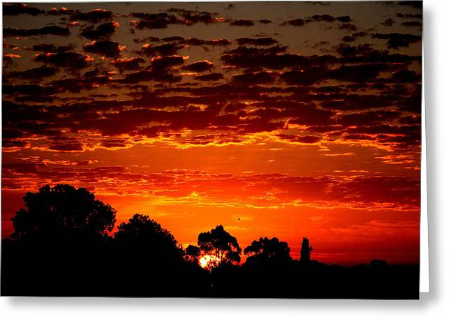 Summer Sunset Greeting Card by Mark Blauhoefer